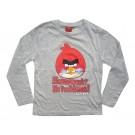 Angry Birds pluus